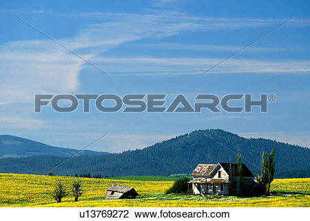 Stock Photo of Farm And Field and Big Blue Sky u13769272.