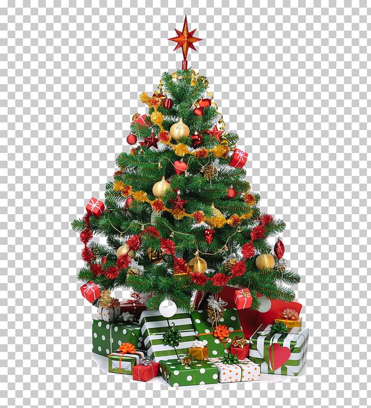 Christmas tree Christmas ornament Gift, Big Christmas tree.