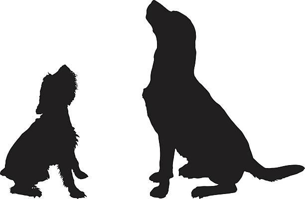 Big Dog Silhouette.