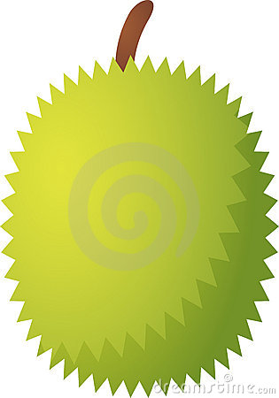 Durian Fruit Icon Stock Photos, Images, & Pictures.