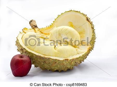 Stock Photos of small apple and big durian have fungus on shell.
