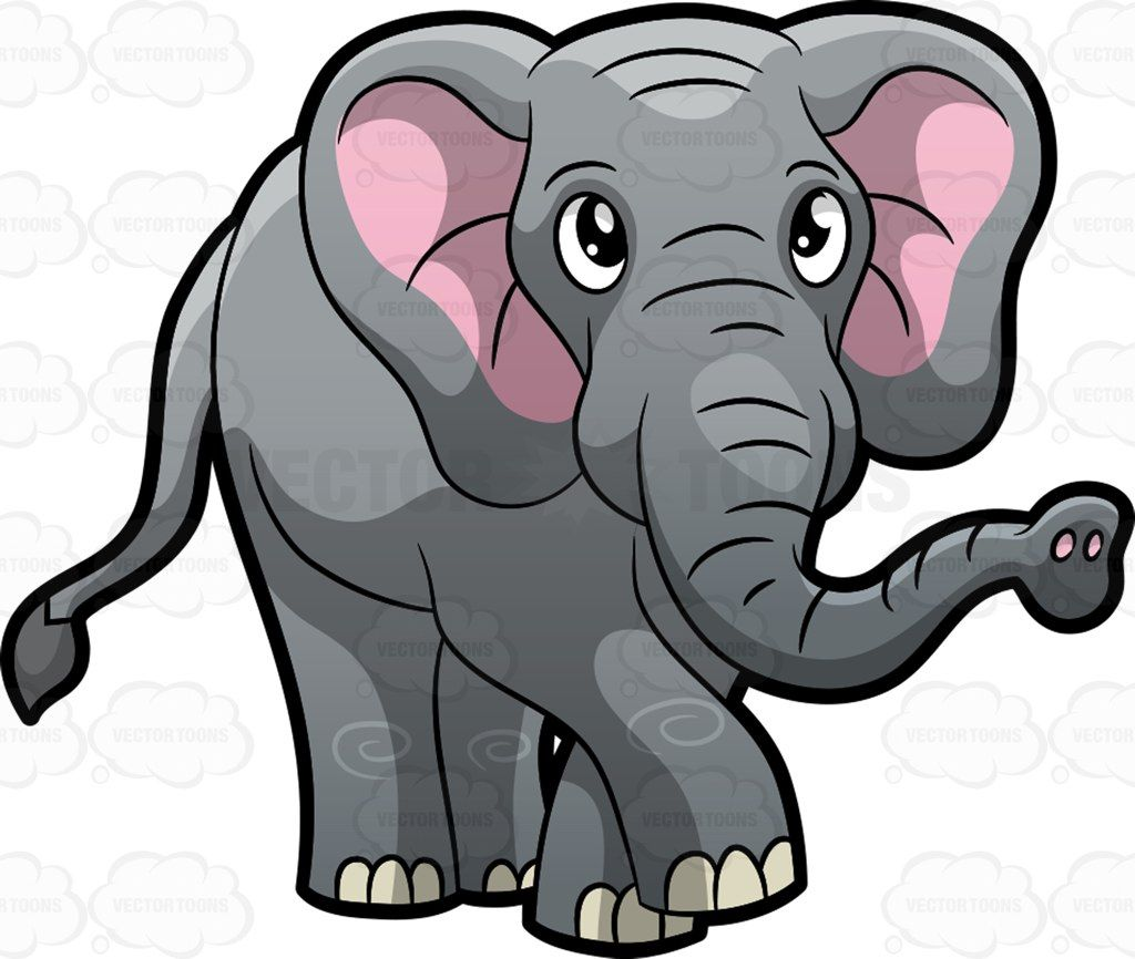 An Elephant walking around at the zoo : A big animal known as the.
