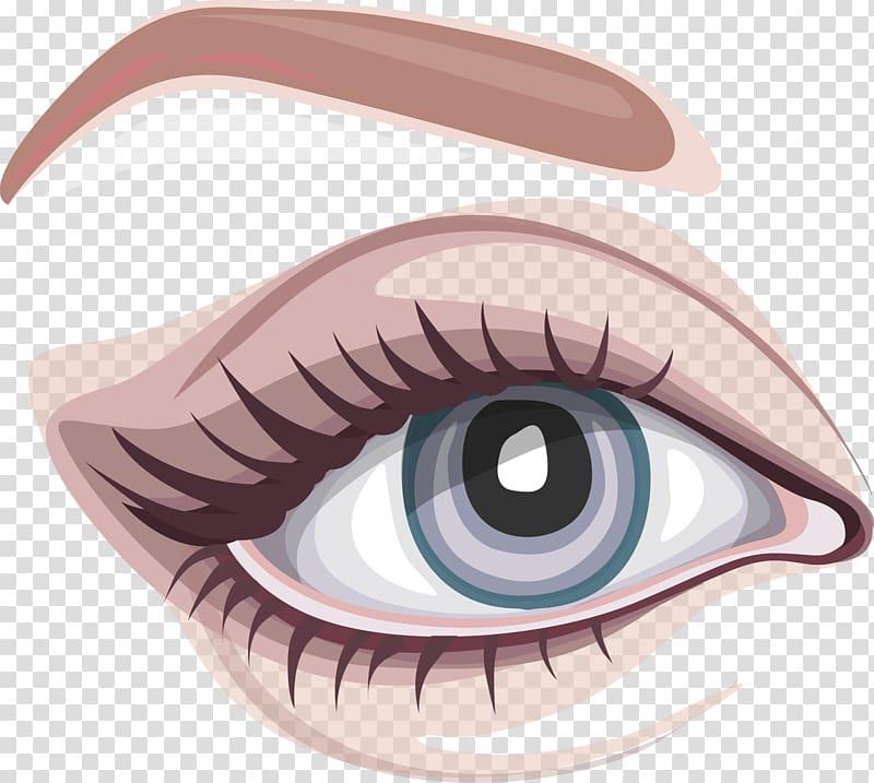 Iris Eyebrow Euclidean , big eye map transparent background.