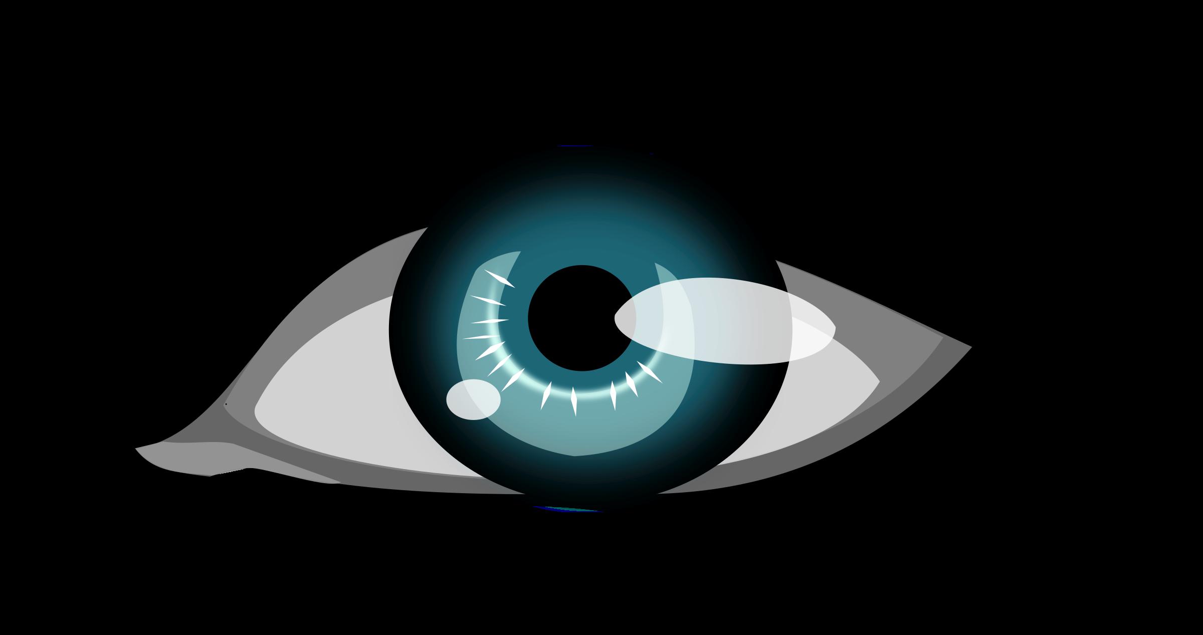 Eyelashes clipart clip art, Eyelashes clip art Transparent.