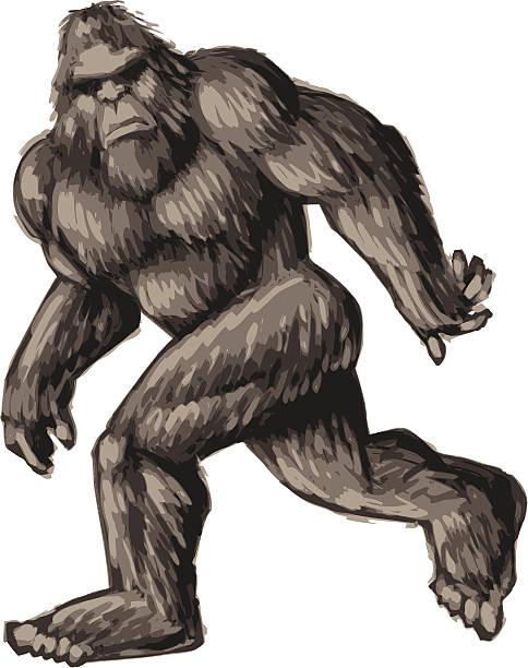 Best Bigfoot Illustrations, Royalty.