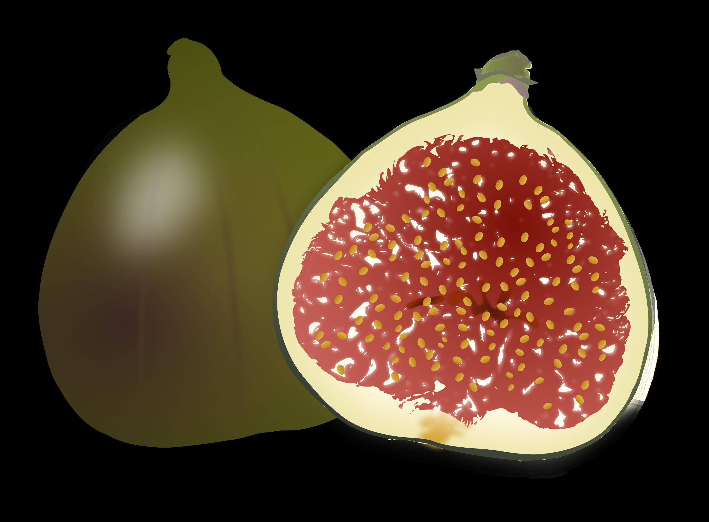 Fig fruit clipart.