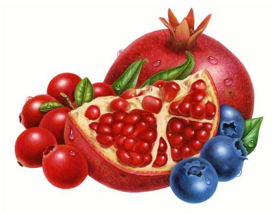 Pomegranate Blueberry cranberry clip art Big 700x540 Fruit.