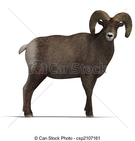 Big horn sheep Illustrations and Clipart. 230 Big horn sheep.