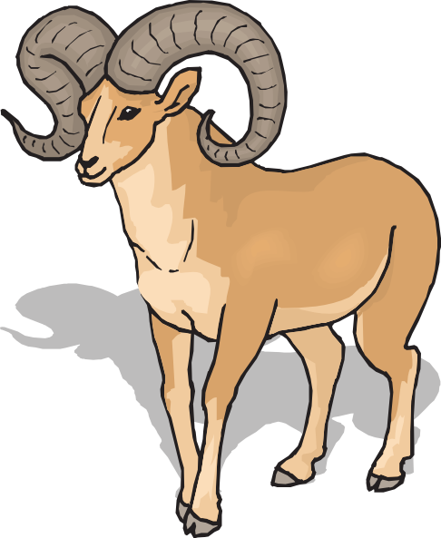 Horn Sheep Clipart.