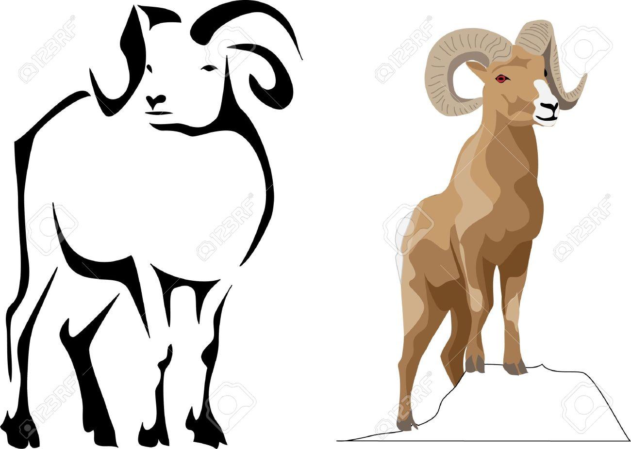 Desert Bighorn Sheep Clipart.