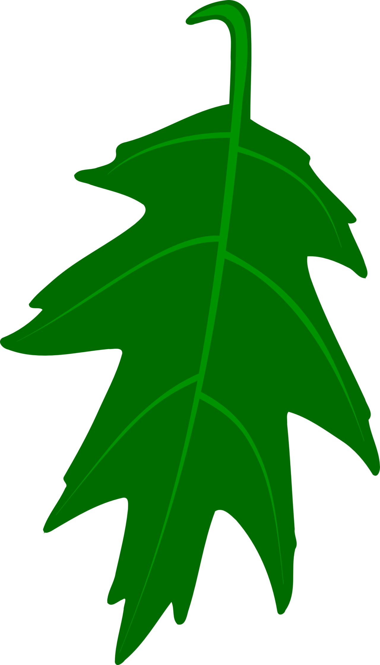 Oak Leaf Vector.