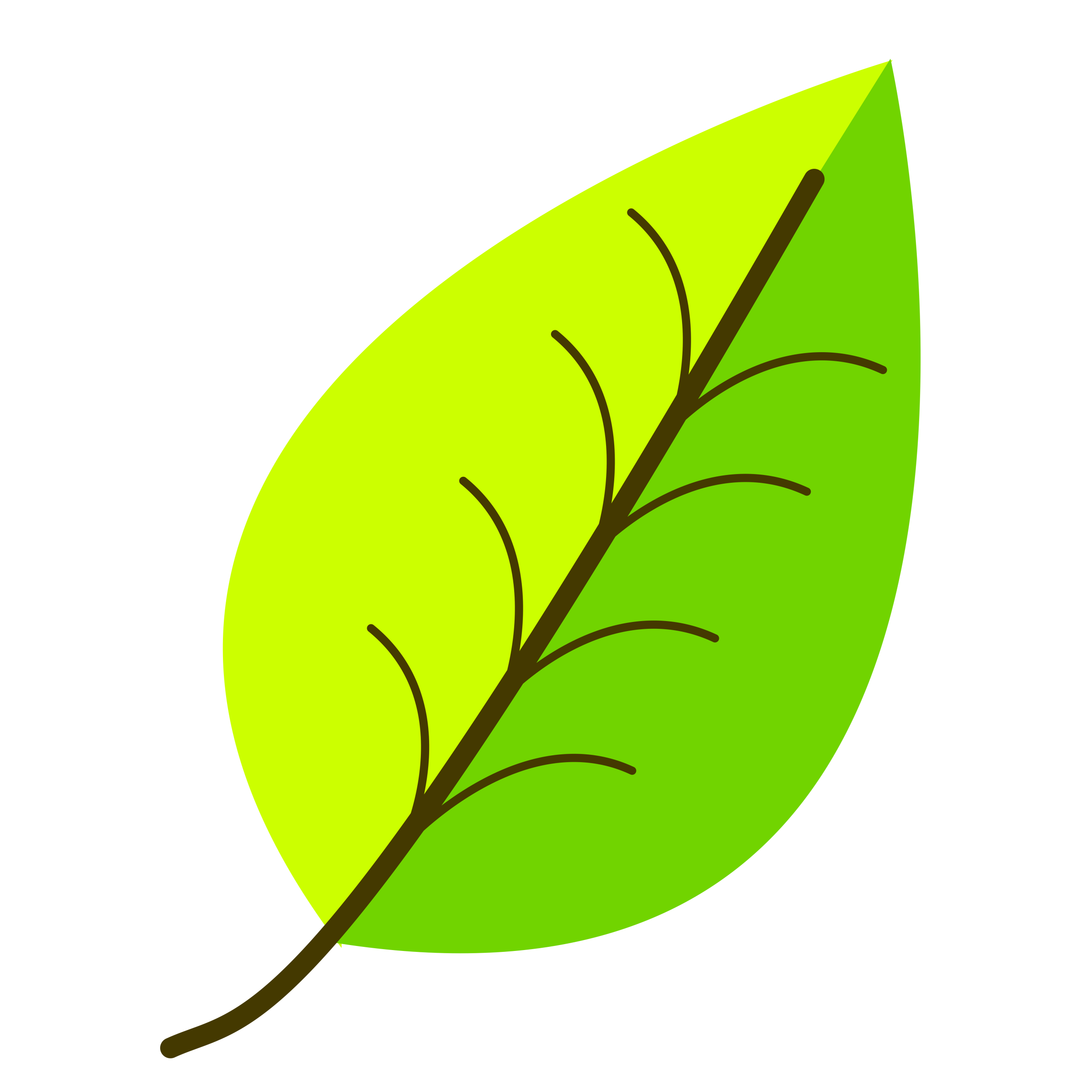 Leaf Color Clipart Clipground