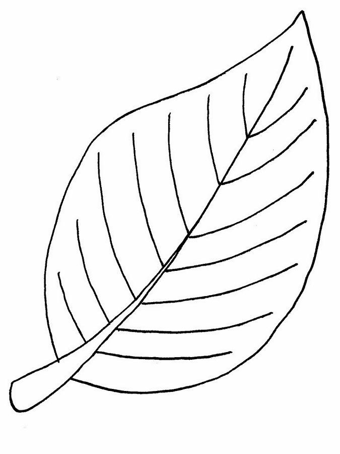 Coloring Page Of A Big Leaf.