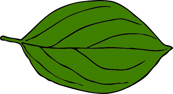 Green leaf clipart #14