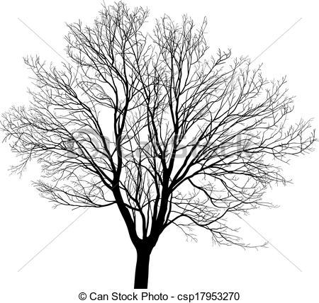 Similiar Maple Tree Line Drawing Keywords.
