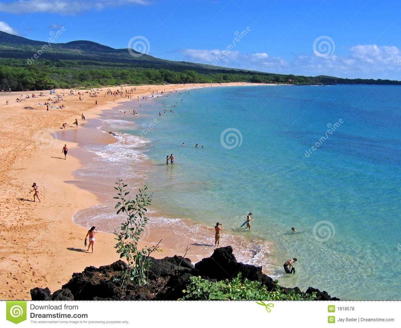 Big makena beach clipart #10