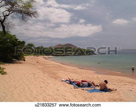 Big makena beach clipart #14