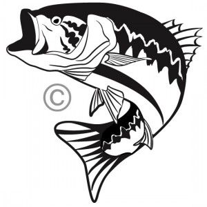 One color custom vector illustration of a big mouth bass. Great for.