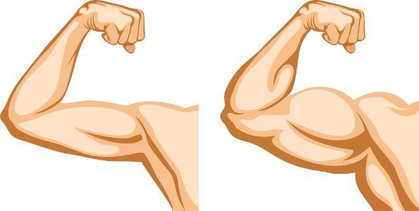 How to Get Bigger Arms.