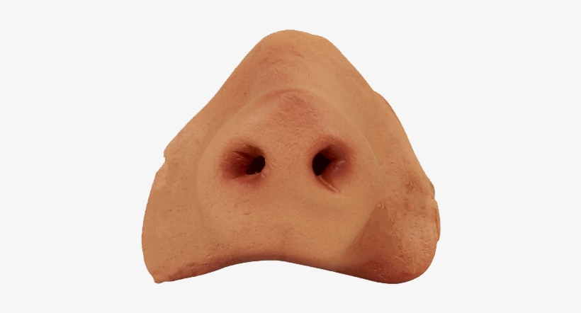 Nose Png Photo.