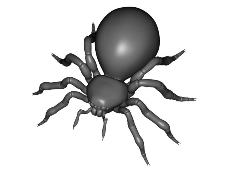 Large spider logo clipart.