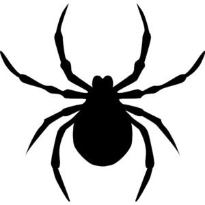 Spider Clip Art & Spider Clip Art Clip Art Images.