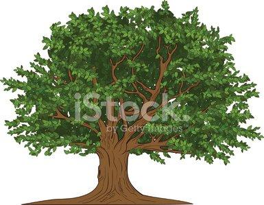 big tree Clipart Image.