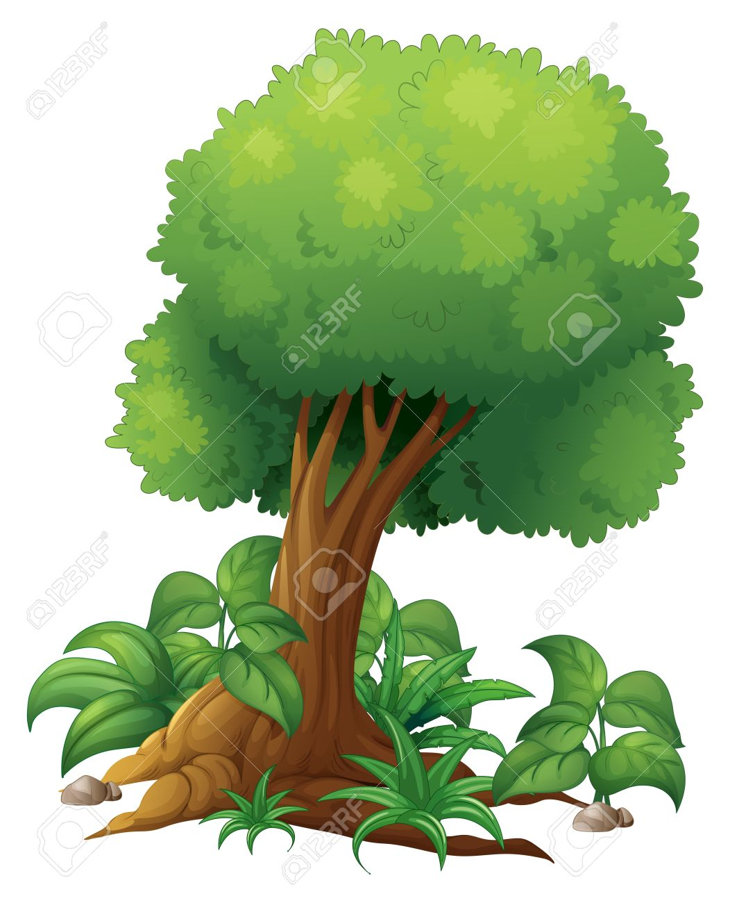 Illustration Of A Big Tree On A White Background Royalty Free.