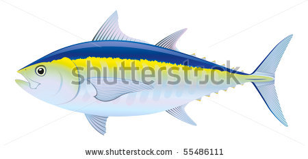 Tuna Fish Clip Art.