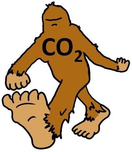 Taming Bigfoot Carbon Footprint Competition.