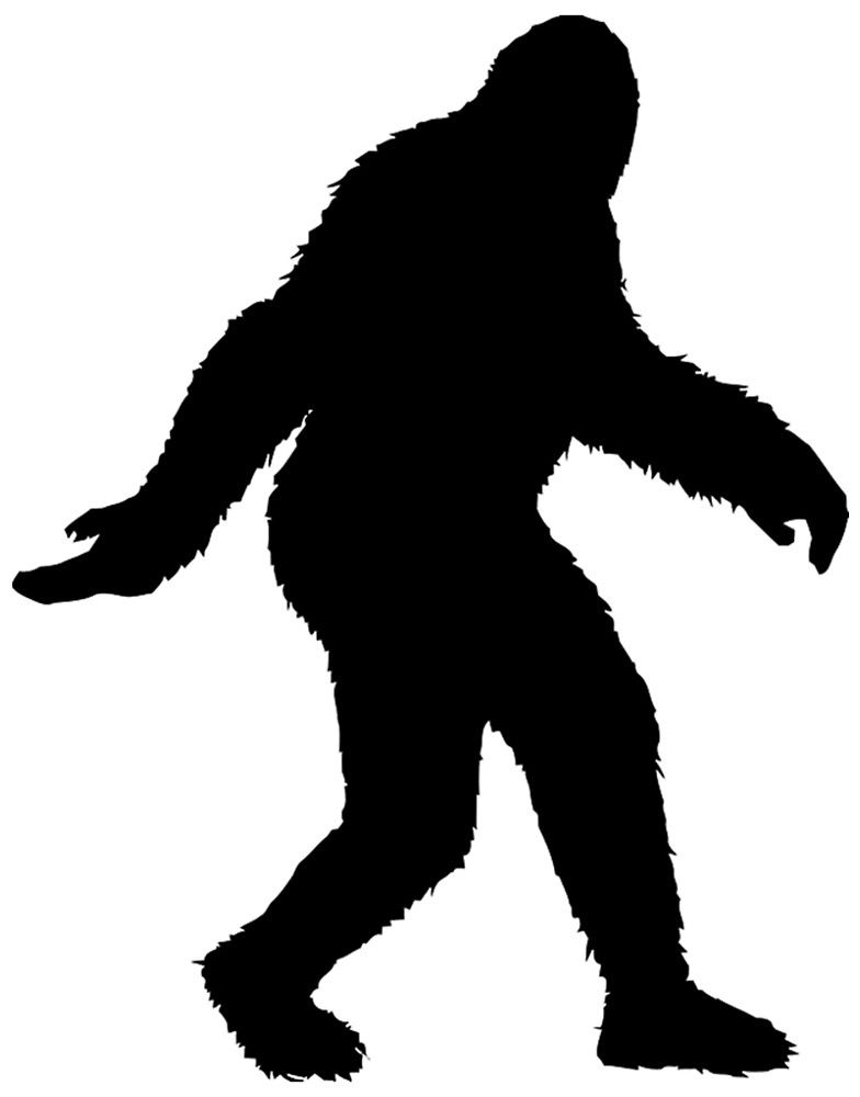Sasquatch Bigfoot Vector\