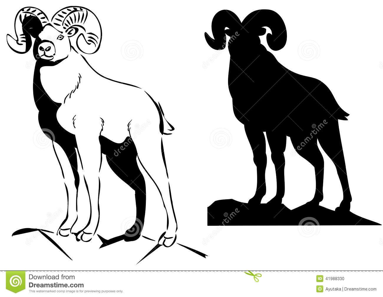 Big Horn Sheep Stock Vector.