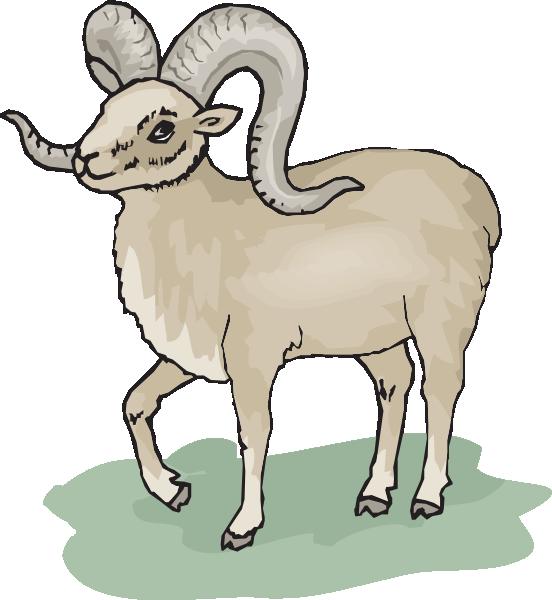 Horn Sheep Clipart.