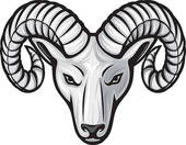 Bighorn sheep skull clipart.