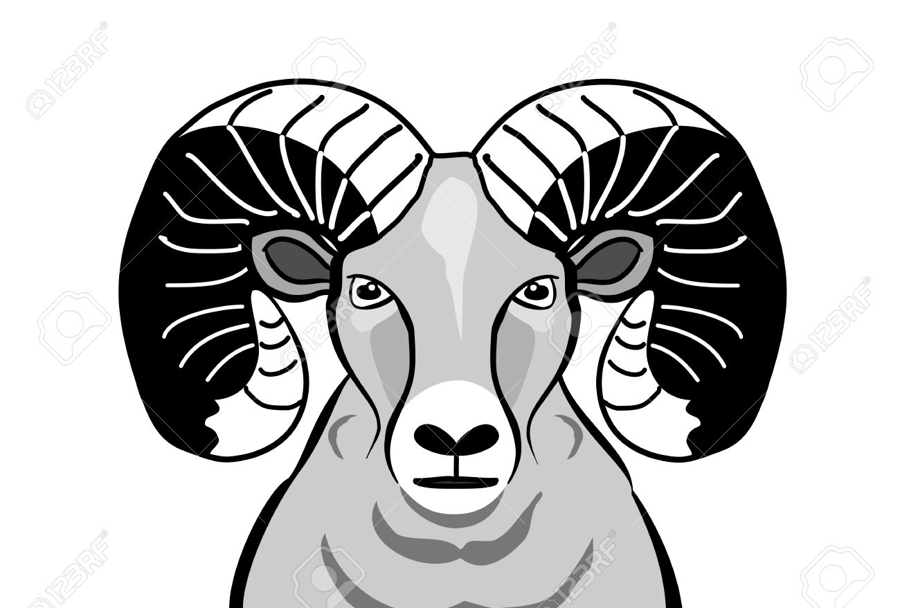 Big horned sheep black and white clipart.