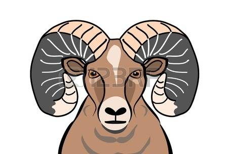 Bighorn sheep clipart.