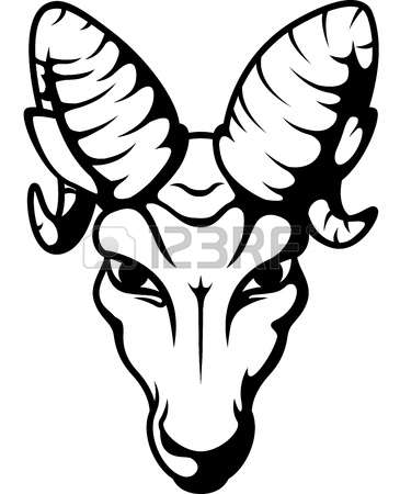 450 Bighorn Sheep Stock Illustrations, Cliparts And Royalty Free.