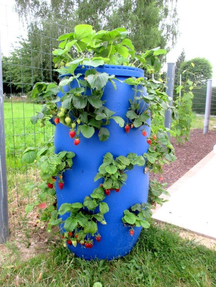 1000+ images about au jardin on Pinterest.
