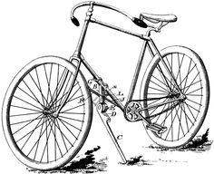 Tandem Bicycle.