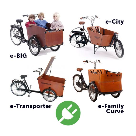 eCargo Bike Rental.
