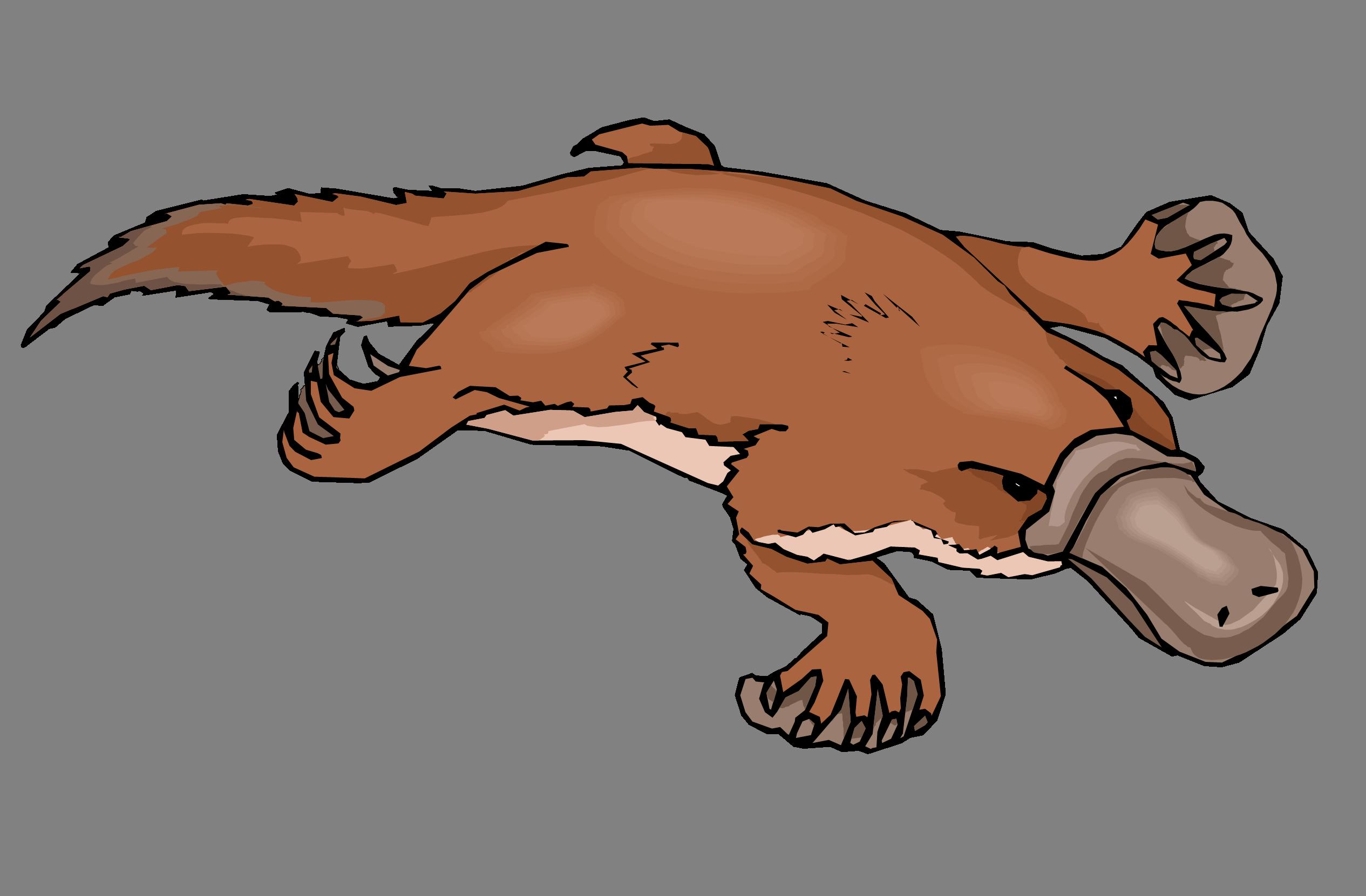 Platypus Clipart.