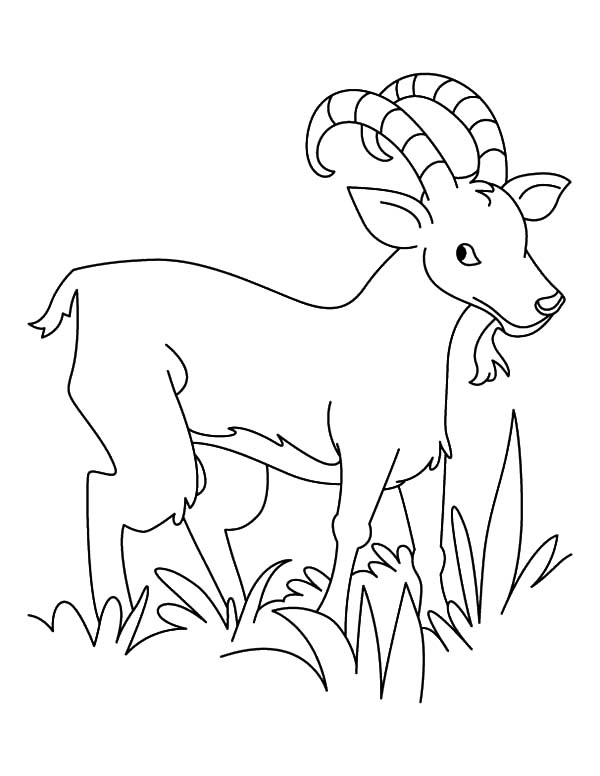 Goat Eating Grass Clipart Black And White.