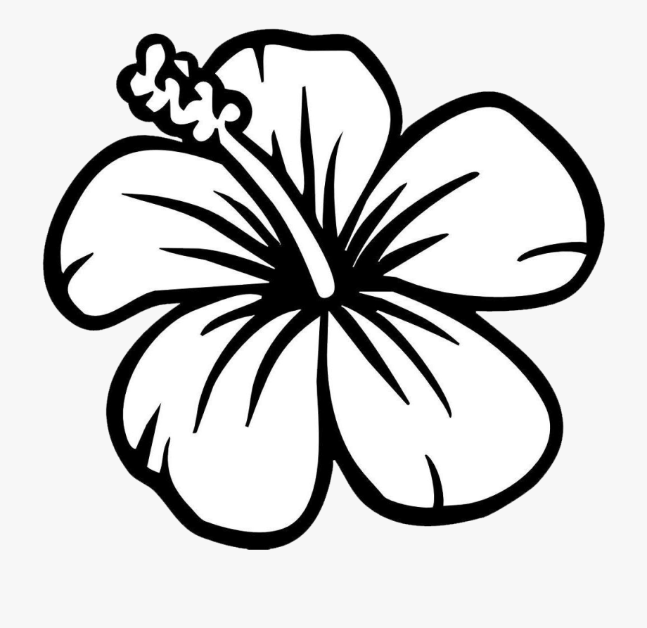 coloring ~ Beautiful Flower Clipart Black And White Free.