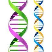 Biochemistry Clip Art.