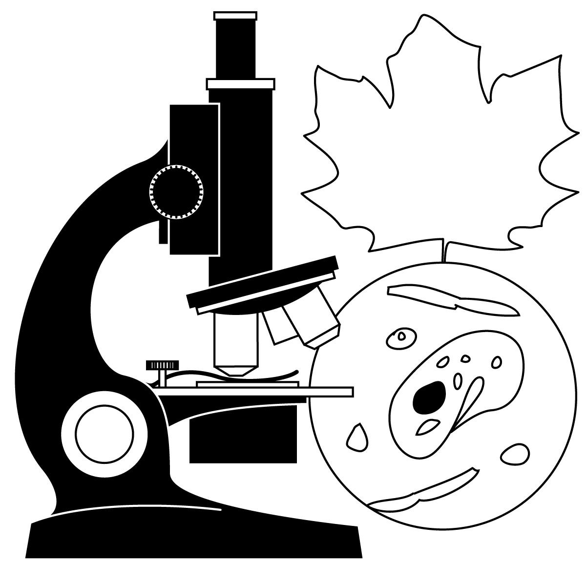 Biological Scientist Clip Art.