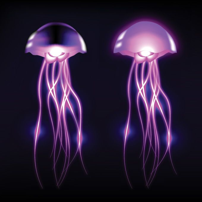 Free vector jellyfish clip art glowing in the dark deep.