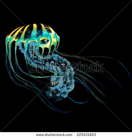 Bioluminescence Stock Photos, Royalty.