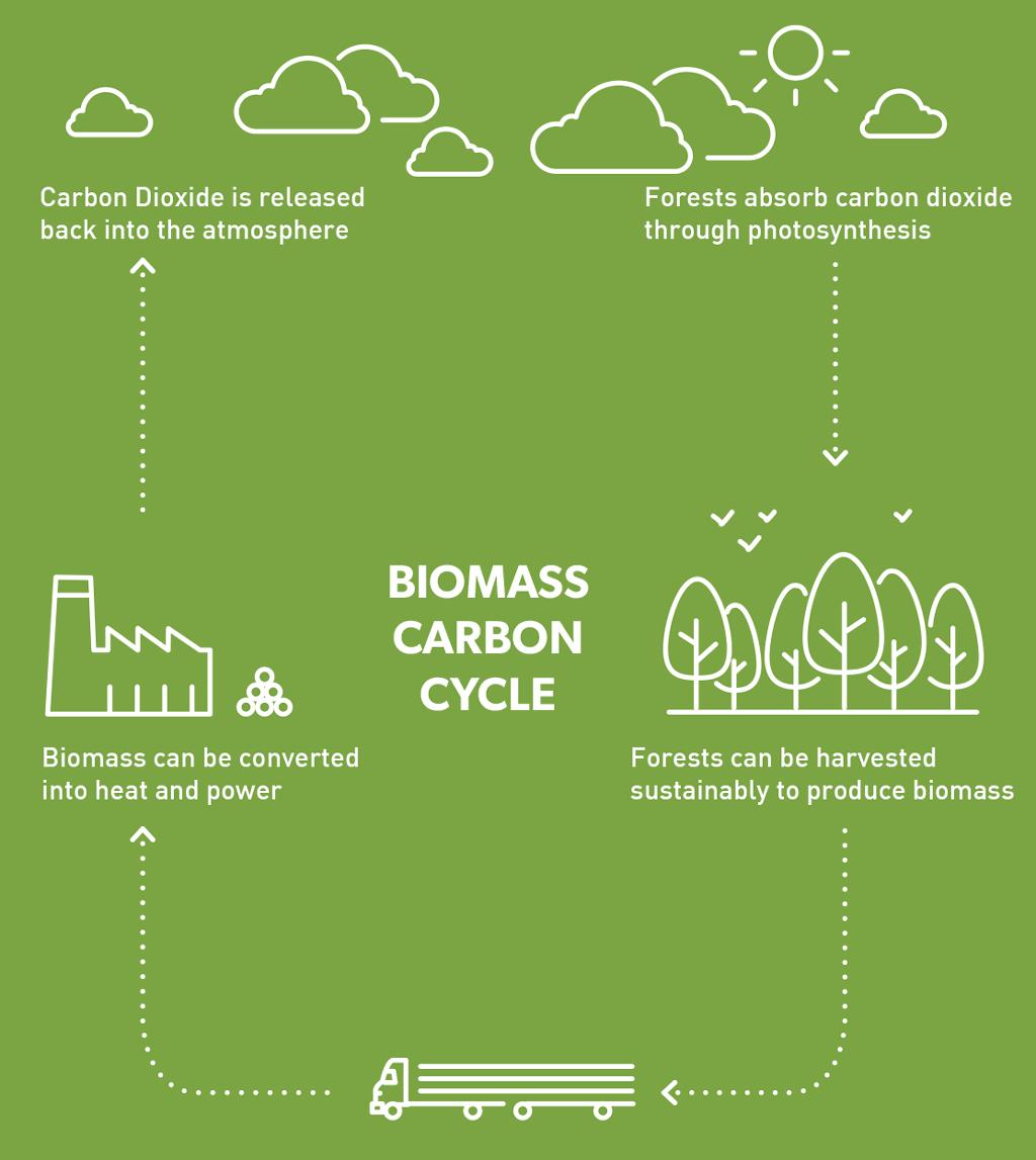 Biomass Power.