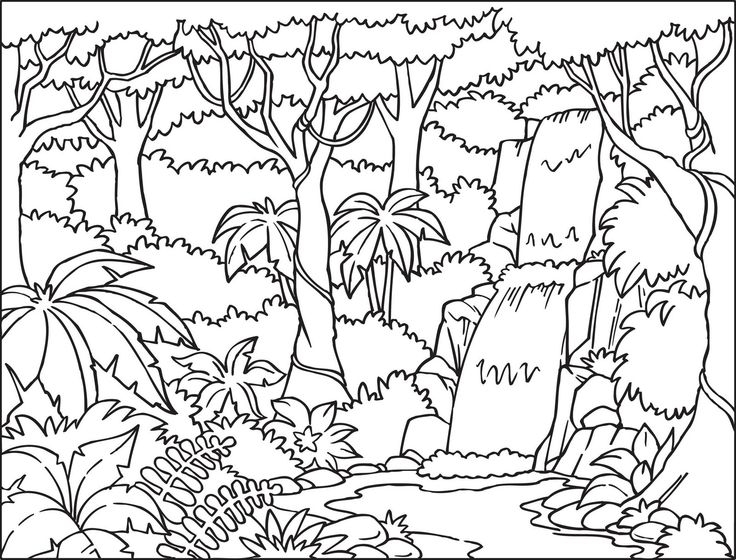 Tropical Rainforest Clipart Black And White.
