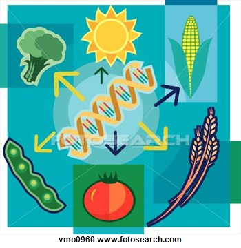 Biotechnology Foods Clipart.